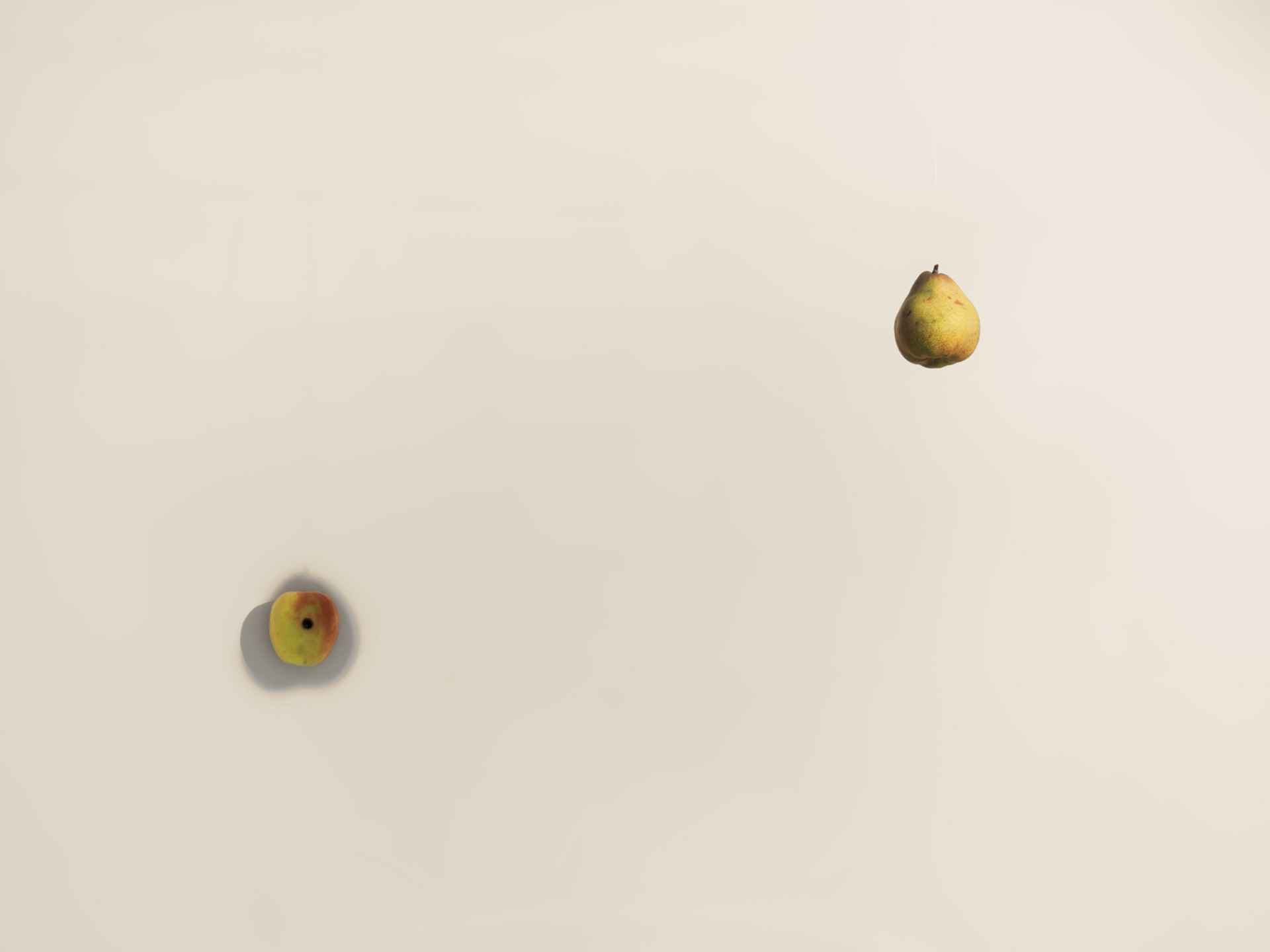 Untitled (Pear / Apple)