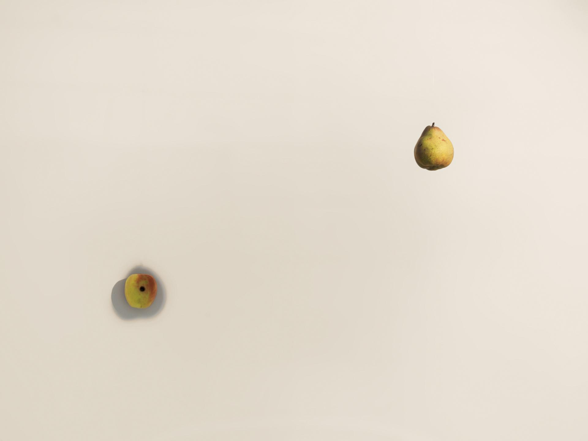 Untitled (Pear / Apple)