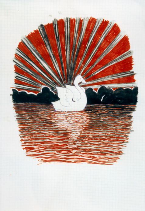 Untitled 1995