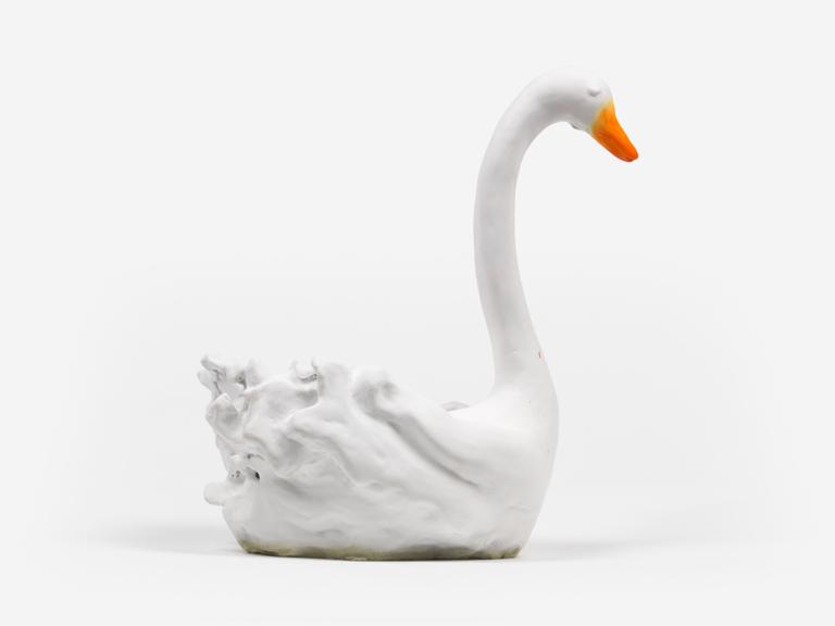White Swan 2016