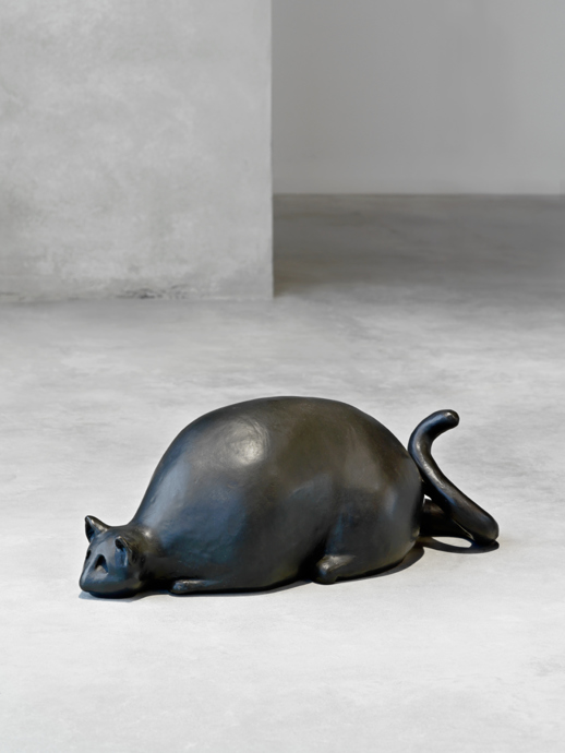 Fat Cat 2016