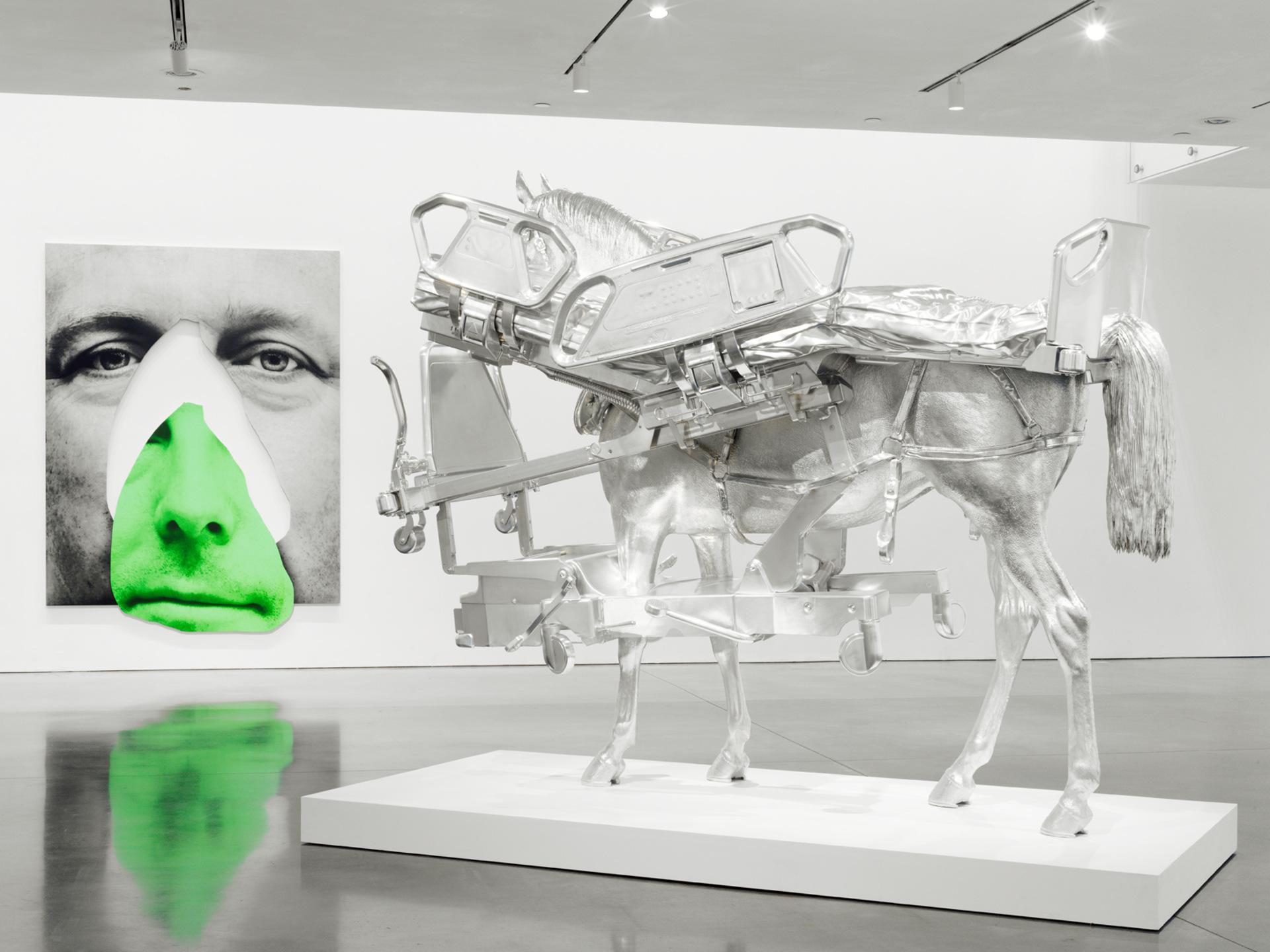 Nose Slip; Horse/Bed