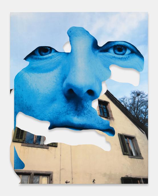 Blue House 2016