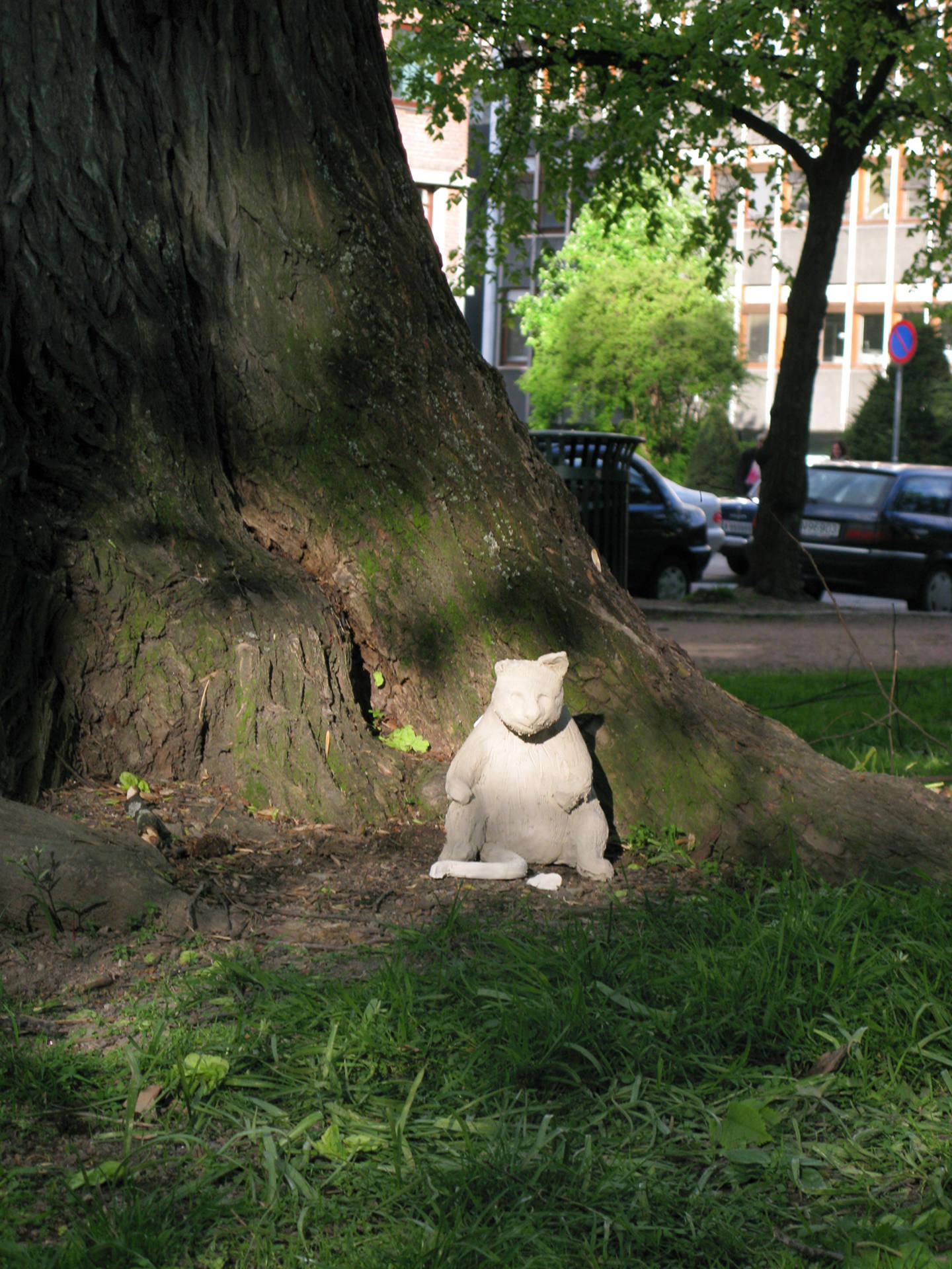 Untitled (Self-Destroying Cat)