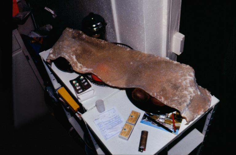 Schimmelteppich (Mold Rug) 1994