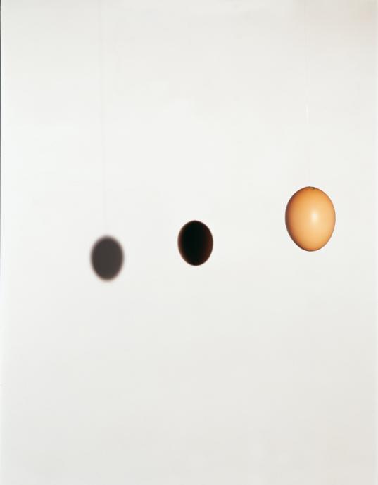 Gänseeier Eclipse 2001-2002